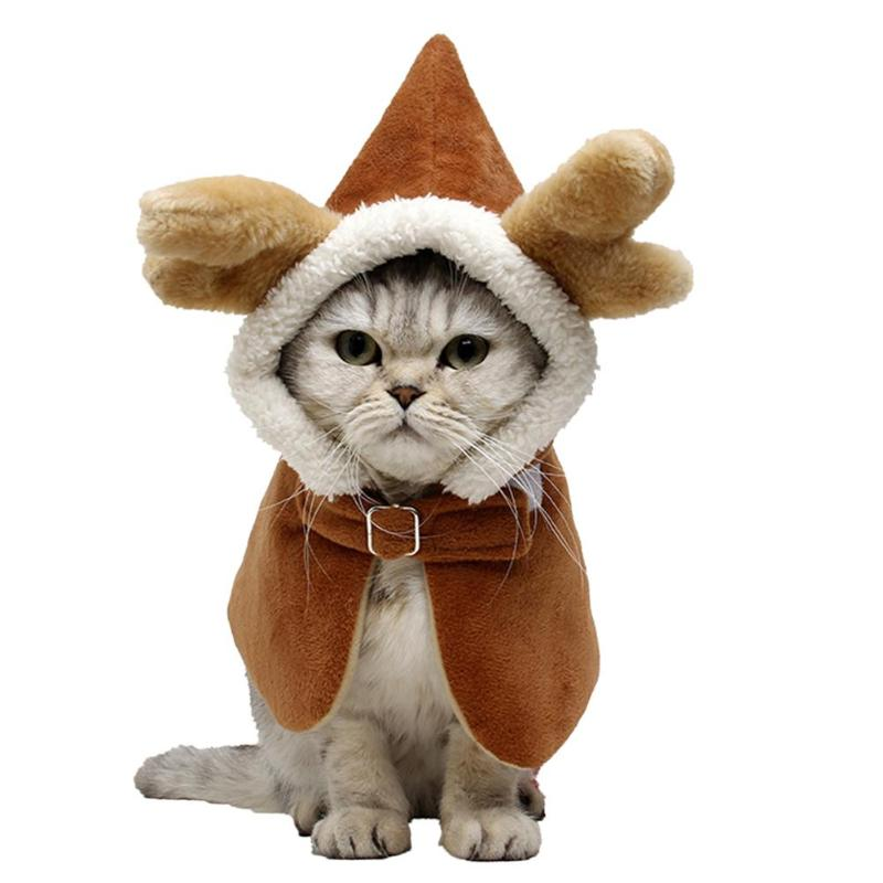 Cat Autumn/Winter Warm Clothes Hoodie