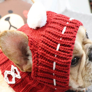 Woolen Dog Hat