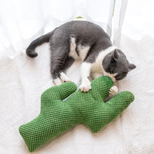 Load image into Gallery viewer, Cactus Catnip Cat Toy