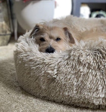 Load image into Gallery viewer, Anti-Anxiety Pet Bed