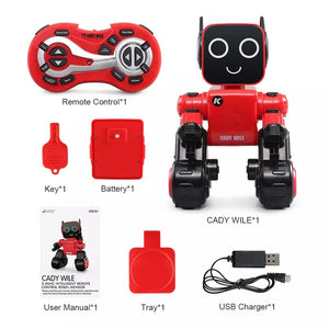 Remote Control Magic Robot