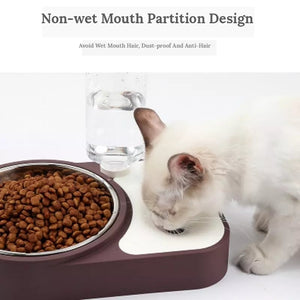 2 in 1 Pet Feeder Bowl