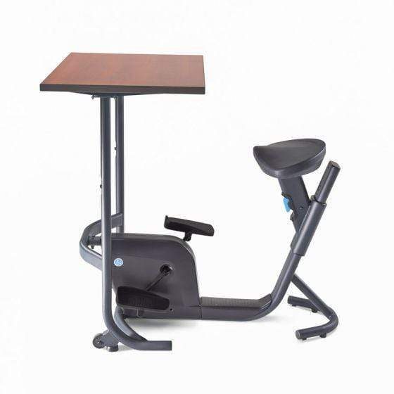 Lifespan Desk Bike