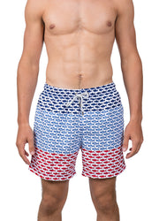 Fish <br>Swim trunk