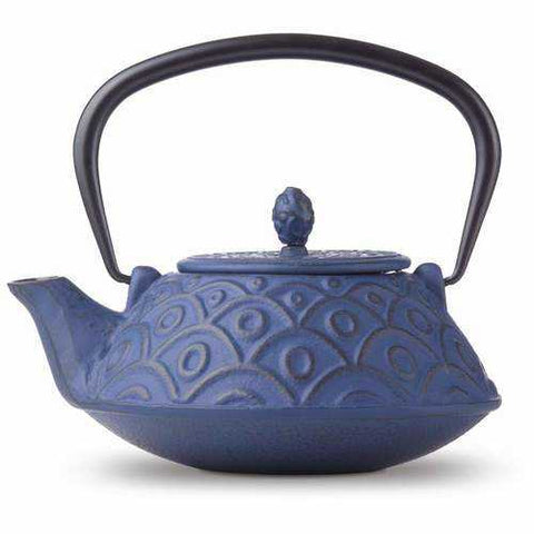 Chef's Secret® Cast Iron Tea Pot - New Blue Store