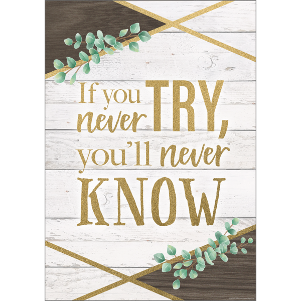 If You Never Try, You'll Never Know Positive Poster