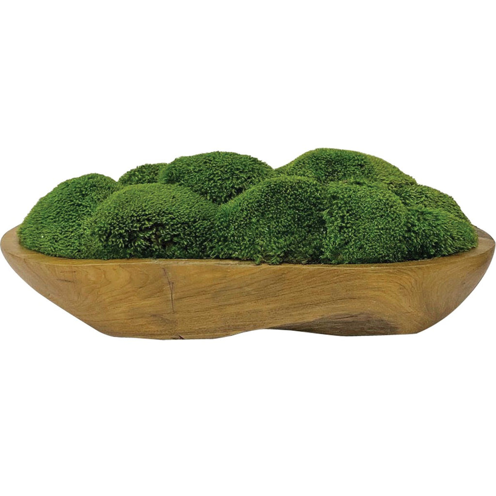 Shop Stacy Garcia, Moss in Teak Wood Bowl Centerpiece