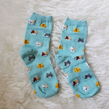 Load image into Gallery viewer, Cat Print Socks