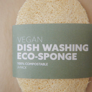 Dish Washing Eco-Sponge