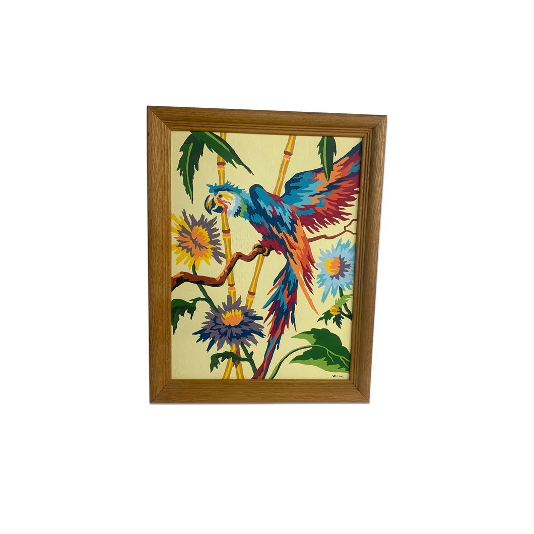 Parrot Paint-By-Number Painting in Wood Frame