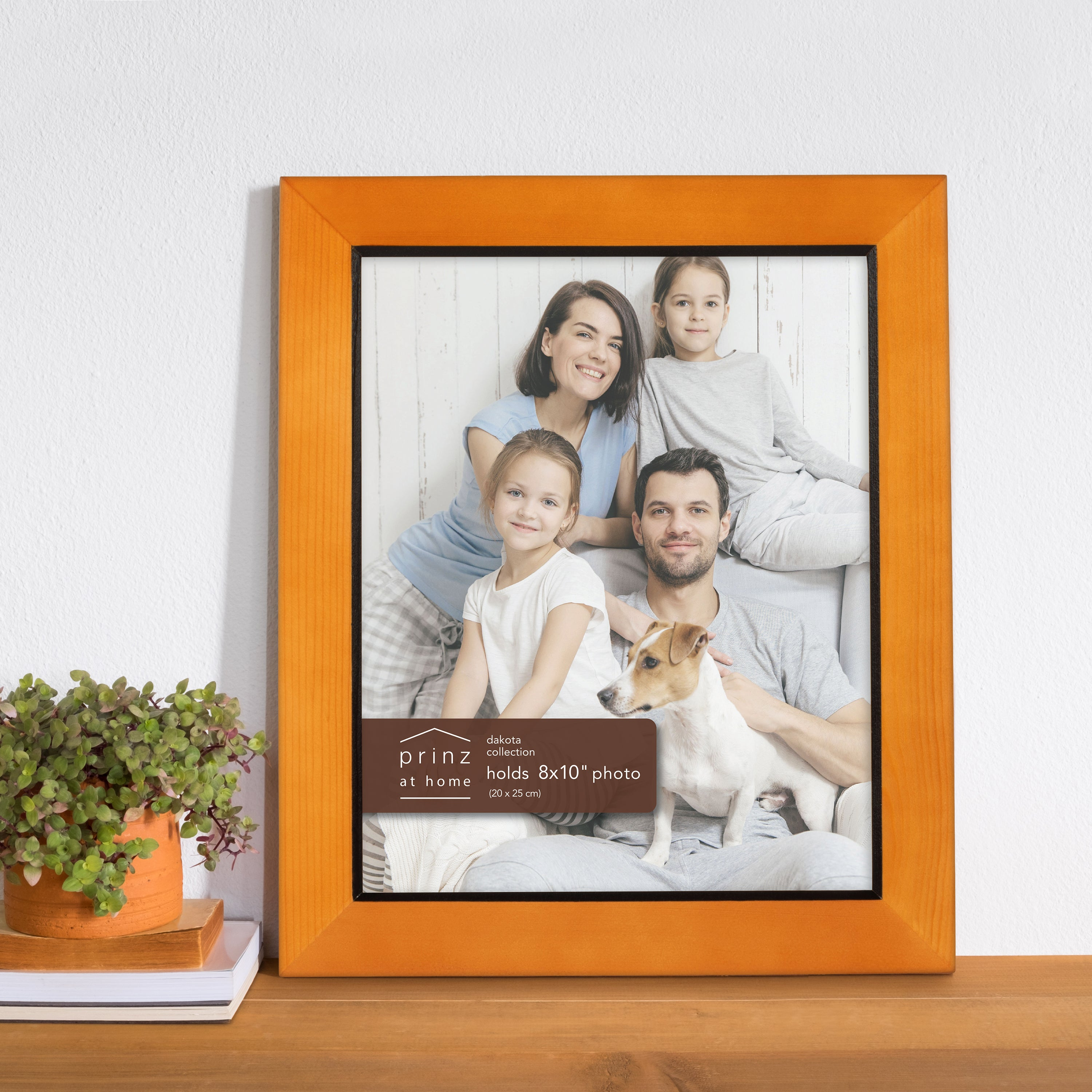 Prinz Dakota 8 Inch X 10 Inch Wood Picture Frame Picture Chestnut