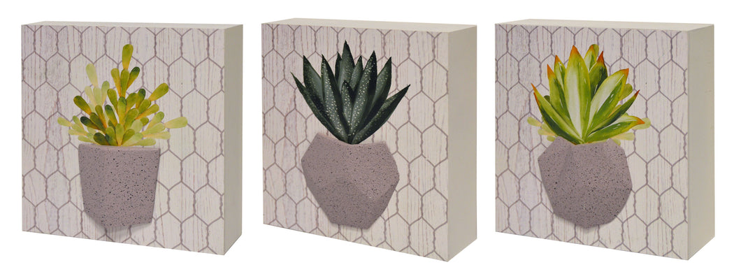 Set of 3 Succulent Artwork On Reversed Box With Raised Resin Element