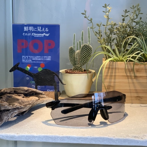 【SMITH / スミス】REVERB black(Photochromic clear to grey & ChromaPop contrast rose 2 lens set)調光レンズ使用モデル