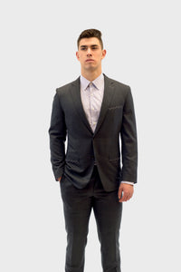 Vitale Barberis Canonico Grey Suit
