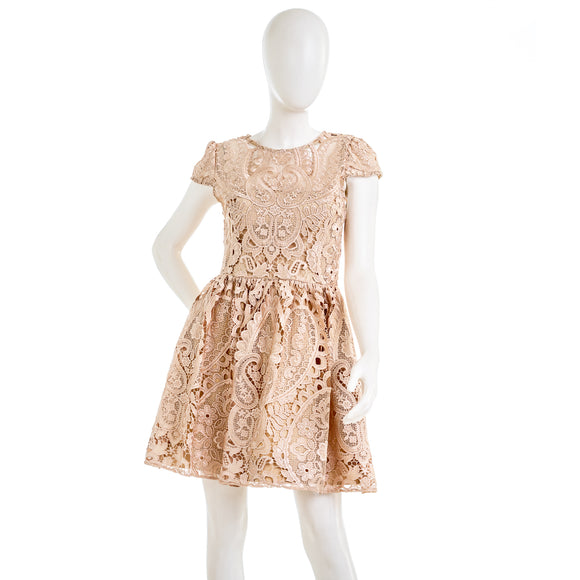 Alice + Olivia Gracia Lace Fit & Flare Lace Mini Dress