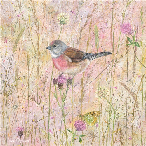 Enchanted Wildlife Greetings Card - Linnets