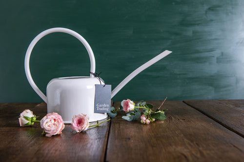 Indoor Watering Can in Chalk - Galvanised Steel 1.1L