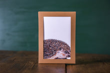 Load image into Gallery viewer, Woodland Creatures Notecards x 8