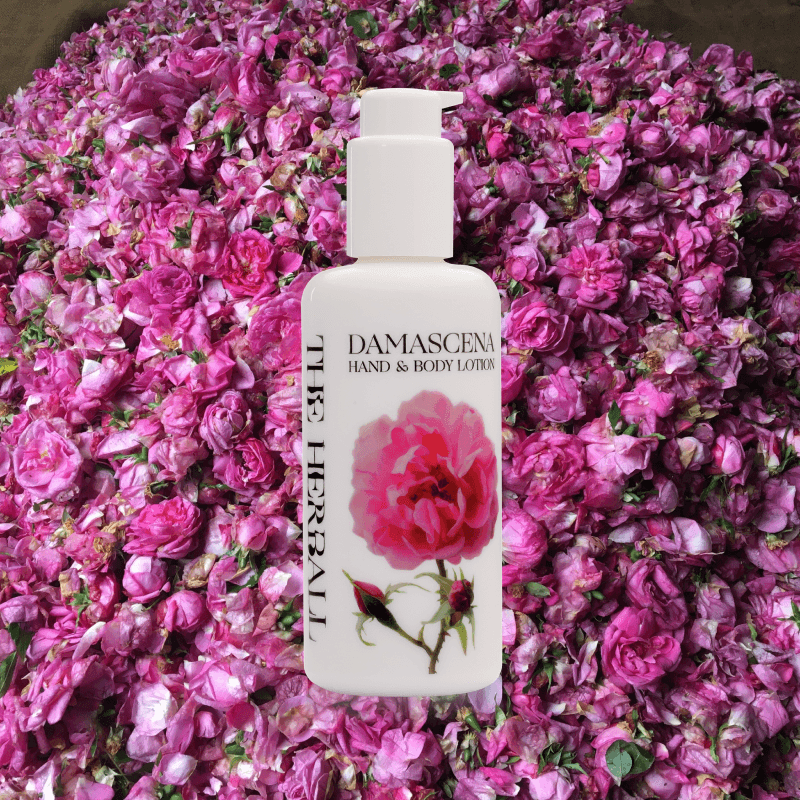 Syria rose lotion in front of rose leaves