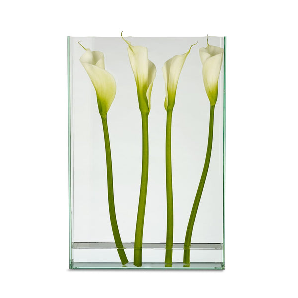Vision Vase (Extra Large: Rectangle)