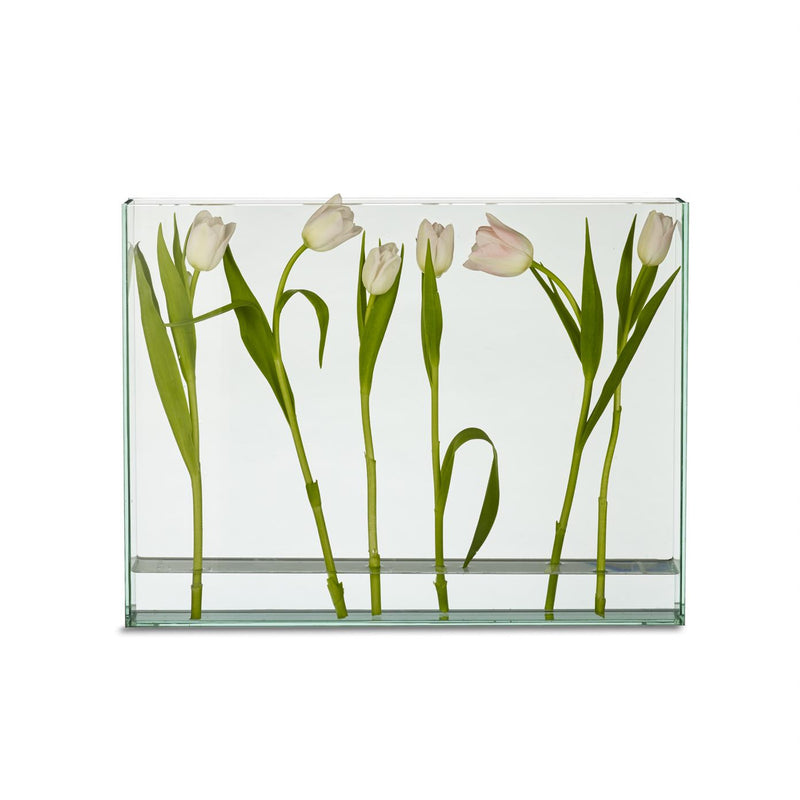 Vision Vase: (Medium: Long: Rectangle)