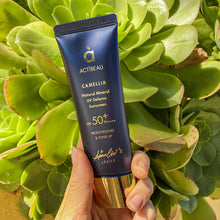 Load image into Gallery viewer, Camellia Natural Mineral UV Defense Sunscreen SPF50+/PA++++ - Buy 2 Get 1 Free