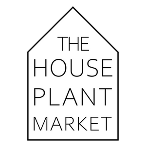 The Houseplant Market