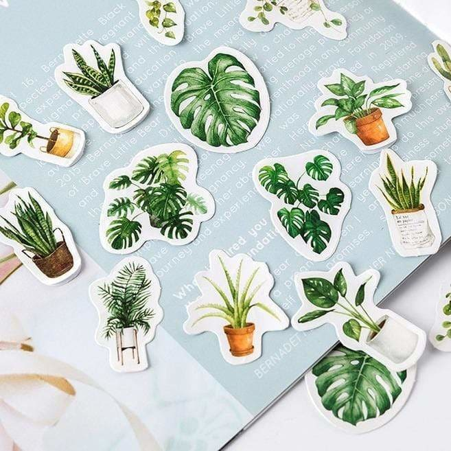 Houseplant Stickers (45) - Sticker Monstera