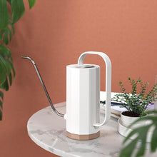 Load image into Gallery viewer, Minimalist Watering Can - Watering Can Plant Care