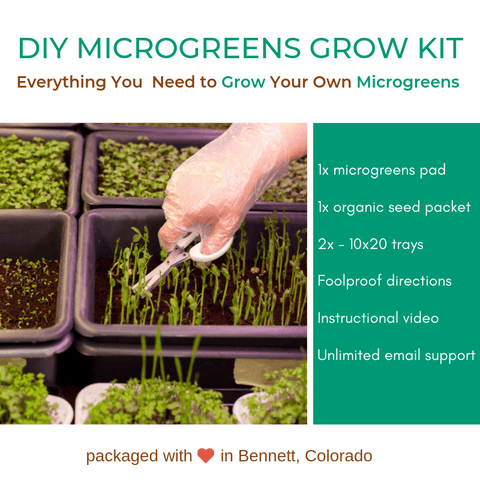Organic & locally grown DIY Microgreens grow kit available at farmers market via online ordering & curbside pick-up. More meal kits from local restaurants also available. Shop local!