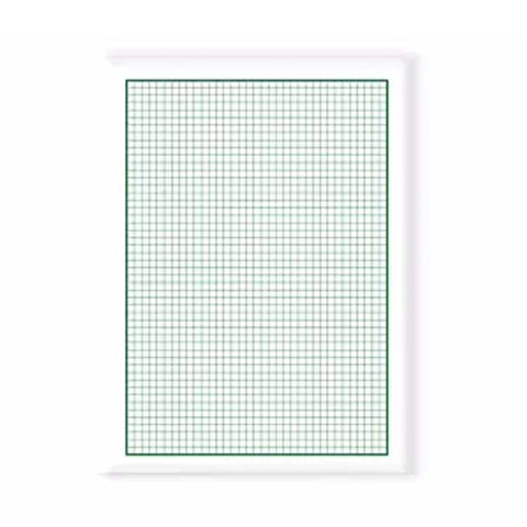 Ordinary Graphing Paper