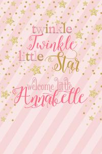 Pink with Gold Stars Welcome Sign