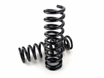 NISSAN NAVARA D40 (V6 DIESEL) SUSPENSION COMPONENTS / Front Springs - Expedition HD OASU1030001