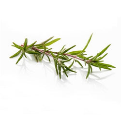 ROSEMARY ROSEWATER 500 ml