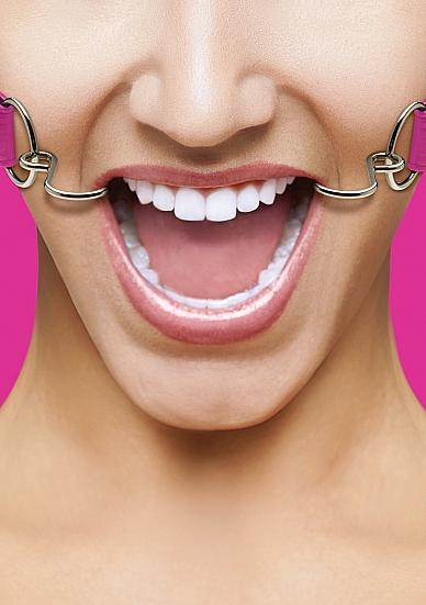 Ouch Hook Gag with Leather Straps Pink O/S