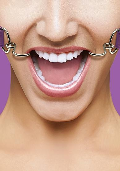 Ouch Hook Gag with Leather Straps Purple O/S