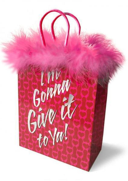 I'm Gonna Give It To Ya Gift Bag - Dick and Jane Adult Emporium
