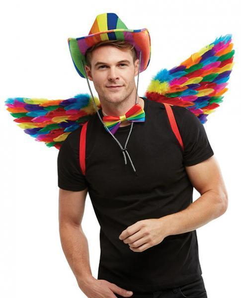 Rainbow Small Feather Wings - Dick and Jane Adult Emporium