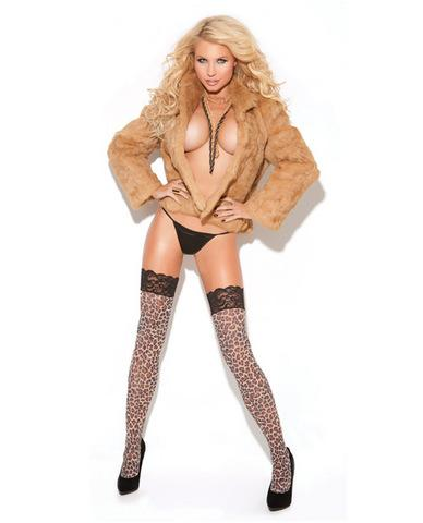 Vivace lace top thigh high leopard o/s - Dick and Jane Adult Emporium