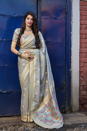 Ash Grey Soft Silk Banarasi Saree