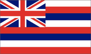 Hawaii state flag 3x5 ft - US state Flags