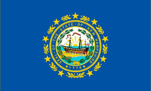 New Hampshire state flag 3x5 ft - US state Flags