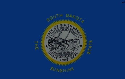 South Dakota state flag 3x5 ft - US state Flags
