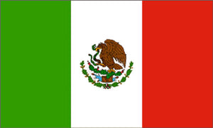 Mexico flag 3x5 ft - International Flags