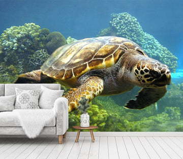 3D Coral Turtle 433 Wall Murals