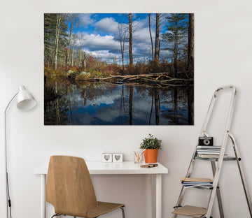 3D Forest Lake 105 Jerry LoFaro Wall Sticker
