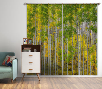 3D Autumn Forest 166 Marco Carmassi Curtain Curtains Drapes
