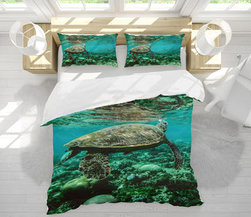 3D Sea Turtle 21028 Bed Pillowcases Quilt