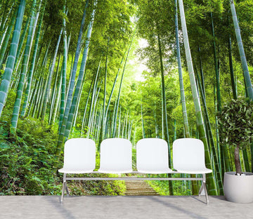 3D Bamboo Forest 013 Wall Murals Wallpaper AJ Wallpaper 2