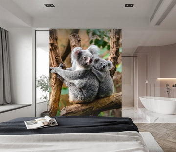 3D Koala On The Tree 257